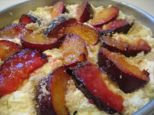 FMD Bonus Recipe: Late Summer Plum Cake