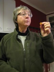 Blenheim Apricot Pâte de Fruit